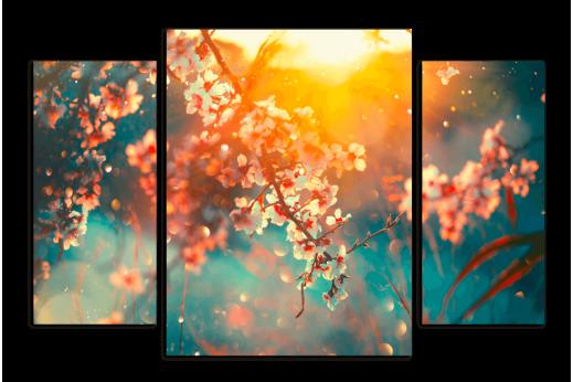 Модульная картина Весенняя сакура